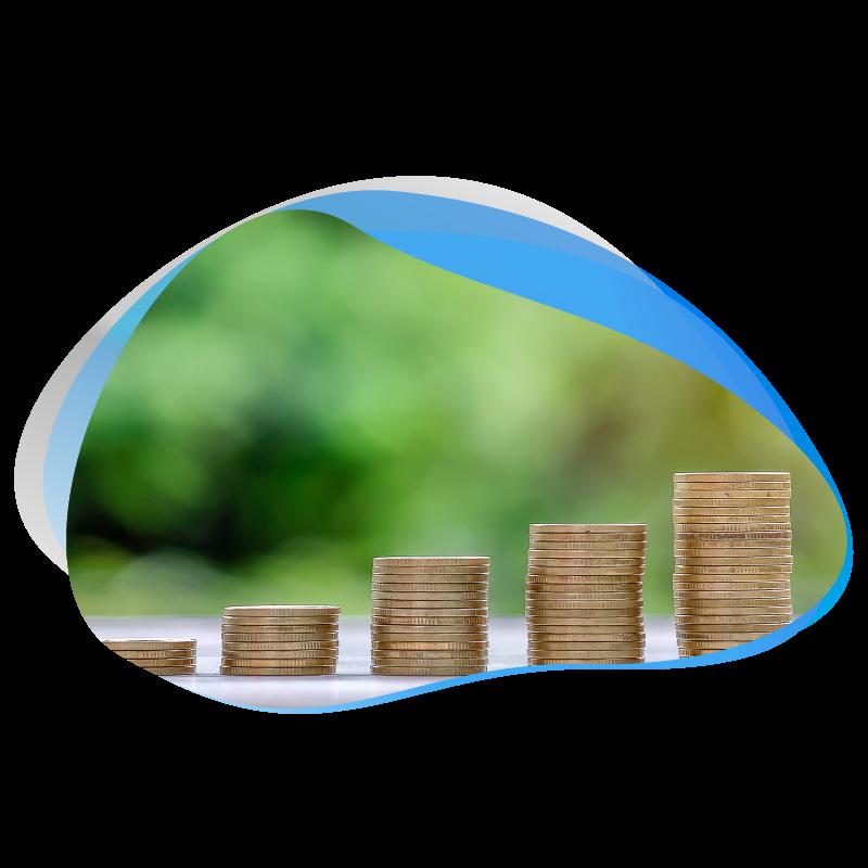 e-Commerce Budget